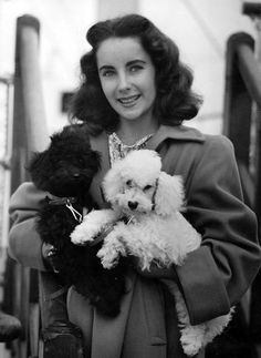 Rare Photos of Elizabeth Taylor - With her two poodles on September 4, 1947.