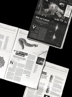 Bubulonis - visualgraphc:   Daily:News - Newspaper design by...