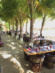 Si Senor, Punta de Mita - best seafood in town