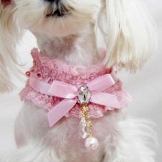 Rosa Laço Colar De Pingente De Pérola Princesa Colar Coleira de Cachorro Gato de Estimação