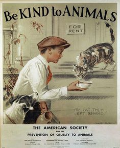 Be kind to Animals Vintage Print Morgan Dennis the American Society Prevention of Cruelty to Animals pets,Rustic Decor,or Living-room, Den by VintagePrintscafe on Etsy