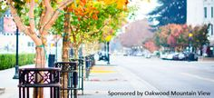The Business Traveler's Guide to Mountain View, California | WhereTraveler