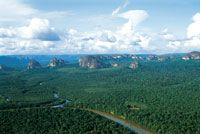 El complejo de torretas y mesas de la serranía de Chiribiquete es una formación extraordinaria que emerge en la exuberancia de la selva lluv...