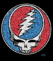 Grateful dead logo patriotic dead head glitter logo skull
