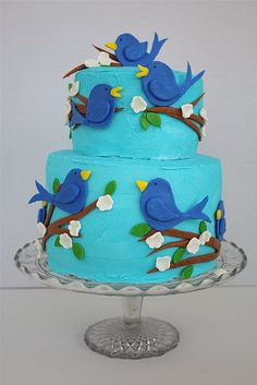 Stunning bird themed cake, perfect for a birthday party of a child who hates the colour pink!