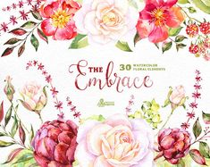 The Embrace. 30 Watercolor floral Elements flowers clipart