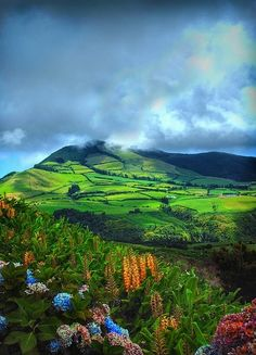 Wonderful Azores http://www.travelandtransitions.com/european-travel/