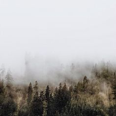 Christian Watson (#1924us): There is silence in a day. #Repost from @1924us. In the early hours the first glimpse of the soft morning light mist stilness subtle dew moist ALL ON A MISTY MORNING. #allonamistymorning #theme #trend #2015 #daybreak #foggy #morning #mist #fog #dawn #paulweller #lamp #object #light #lights #homelighting #interior #inspiration #inspirational #design #lightforall #lightboxfavorite #lightbox by lightboxamsterdam