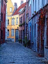 patershol gent -Het Patershol is een oude wijk in het historische centrum van de Belgische stad Gent. De wijk huisvest tegenwoordig veel kleine gezellige cafés en restaurantjes. In de wijk bevindt zich het Caermersklooster en het Huis van Alijn. Het Patershol en omgeving werden in 1981 beschermd als stadsgezicht