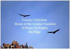 This Luxury Collection Route of the Condor Vacation visits all of the Inca & Colonial Highlights of Lima, Arequipa, Colca Canyon, Cruz del Condor, Cusco, Sacred Valley, Machu Picchu, and Lake Titicaca in 12 Days.  You will enjoy Private Guided Tours and stay in the Luxury 5* Marriott Hotel in Cusco, rated No. 3 Hotel in Peru, and the Colca Lodge in the Colca Canyon where you will feel the healing powers of the open-air hot pools.