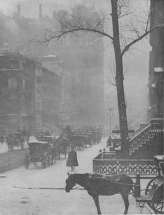 Alfred Stieglitz: The Street, Fifth Avenue, 1900-1901 Softly focused and printed in equally soft tonalities, the image reveals Stieglitz's sharp eye for the precise moment an unwitting protagonist stepped into place to complete his picture.