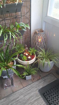cute Buddha statue in a indoor mini garden Indian Inspired Decor, Indian Home Decor, House Plants Decor, Plant Decor, Buddha Statue Home, Indoor Zen Garden, Home Yoga Room, Porch Wall Decor, Feng Shui