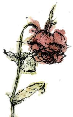 A Wilted Rose on Pinterest | Rose Paintings, Cool Paintings and Roses