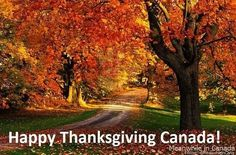 We are celebrating Thanksgiving this weekend and I want to express my gratitude to you. Thank you so much for being in my life. All of you make what I do possible and it means the world to me that i can co next with you to spread positivity. I am grateful for who you are #thanksgiving #Gratitude #canada