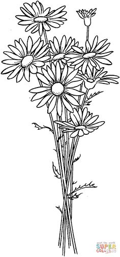 Daisies coloring page | SuperColoring.com