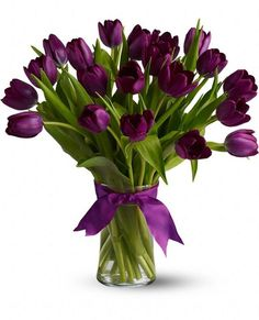 Order Passionate Purple Tulips - from Bloomers, your local Richland florist. For fresh and fast flower delivery throughout Richland, MI area. Purple Tulips, Tulips Flowers, My Flower, Fresh Flowers, Spring Flowers, Flower Power, Planting Flowers, Beautiful Flowers, Purple Plants