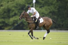 Nic Roldan at the Audi Polo Challenge 2014
