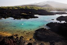 The Fishbowl In Maui - Snorkeling in the lava beds...this is where I saw a real Humuhumunukunukuapua'a