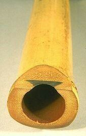 A shakuhachi showing its utaguchi (歌口, blowing edge) and inlay. Sufi Music, Folk Music, Art Music, Ancient Egyptian Tombs, Ancient Persian, Peter Gabriel, Shakuhachi Flute, Old Musical Instruments, Woodwind Instrument