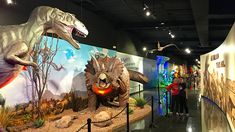 Bowlin's The Thing: Aliens vs. Dinosaurs Museum