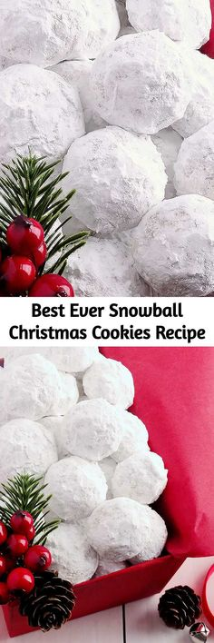 christmas cookie snowballs Simply the best! Buttery, never dry, with plenty of walnuts for a scrumptious melt-in-your-mouth shortbread cookie (also known as Russian Teacakes or Mexican Wedding Cookies). Everyone will LOVE these classic Christmas cookies! Christmas Sweets, Noel Christmas, Christmas Goodies, Christmas Candy, Christmas Appetizers, Roll Cookies, Yummy Cookies, Sugar Cookies, Holiday Baking