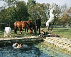 Poolside in the Kentucky countryside on the #VersaceSS17 campaign shot by Bruce Weber.