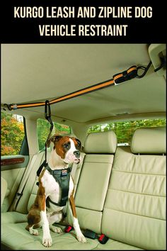 Ensure your dog's safety with this Kurgo Leash and Zipline Dog Vehicle Restraint.