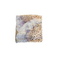 Faliero Sarti Duse Scarf (€235) ❤ liked on Polyvore featuring accessories, scarves, beige, faliero sarti scarves and faliero sarti