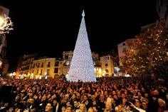 Salerno Luci d'Artista   L'Albero in Piazza Portanova