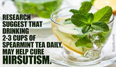 One name which I think has a special position in the exhaustive list of teas is spearmint tea! It has been equally popular since ancient times for its many health benefits. Spearmint tea is one of the best forms of herbal tea known to man. Tea Benefits, Health Benefits, List Of Teas, Spearmint Tea, Herbal Tea, Pcos, Herbalism, The Cure, Remedies