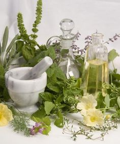 Ailment / Herbal Remedies    Cross Reference Guide