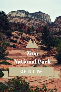 Zion National Park Scenic Drive – The Must See Stops! www.thatlbb.com