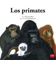Los primates. Textos de Fernando Bort e ilustraciones de Carlos Velázquez. En editorial SM. A partir de 4 años. En este libro descubrirás quiénes son los primates y cuántos tipos diferentes forman esta familia. *En nuestra biblioteca.