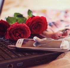 66 ideas wallpaper phone cute pink wallpapers love posts for 2019 Fb Wallpaper, Flower Background Wallpaper, Trendy Wallpaper, Flower Backgrounds, Rose Day Pic, Cover Pics For Facebook, Apple Watch Wallpaper, Book Flowers, Cute Photography