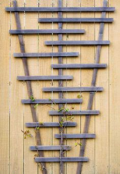 Bring visual interest to a boring, flat fence with a modern DIY garden trellis! Free woodworking plans and tutorial at The Handyman's Daughter!