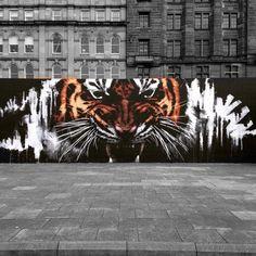 """""""""""Tiger Style"""" piece by @klingatron in Glasgow"""