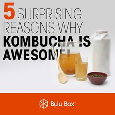 Kombucha Benefits - pretty excited to make some Kombucha! -ck Informations About Kombucha Benefits Homemade Smoothies, Yogurt Smoothies, Strawberry Smoothie, Breakfast Smoothies, Healthy Smoothies, Smoothie Recipes, Vegetable Smoothies, Juice Recipes, Best Kombucha