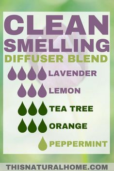 Diffuser Blends That'll Make Your House Smell Amazing – This Natural Home Diffuser Blends That'll Make Your House Smell Amazing – This Natural Home,DOTERRA Essential oils have so many amazing benefits, but sometimes we. Essential Oil Diffuser Blends, Essential Oil Uses, Doterra Diffuser, Tea Tree Essential Oil, Young Living Oils, Young Living Essential Oils, Diffuser Recipes, Braut Make-up, Aromatherapy Oils