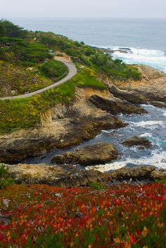 Highway 1, Carmel-by-the-Sea, CA by Gretcholi, via Flickr.  July, 2011