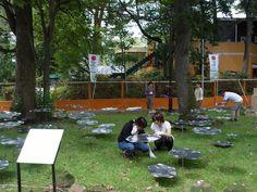 全国都市緑化フェアTOKYO ランドスケープチーム参加 : eddnews