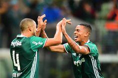 Palmeiras bate o Flu e se mantém firme na busca pela liderança