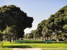 Torrance has over 30 parks throughout the city.