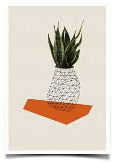 "Print of ""Home and plant/orange"""