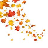 Autumn Leaves Design Elements - Download From Over 62 Million High Quality Stock Photos, Images, Vectors. Sign up for FREE today. Image: 32184882