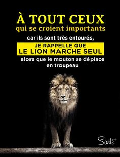 To all those who think they are important because they are very surrounded, I remember that the lion walks alone while the sheep moves in herd. Walking Alone Quotes, Positive Affirmations, Positive Quotes, All Eyez On Me, French Quotes, Entrepreneur Inspiration, Words Quotes, Quotes Quotes, Decir No