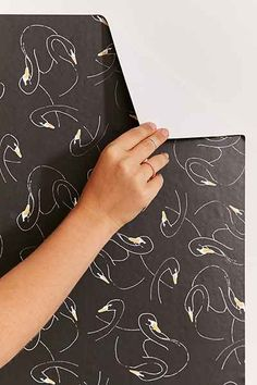 Chasing Paper And Kate Zaremba Swansy Removable Wallpaper