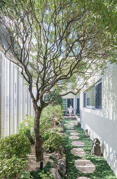 Steel Poles Screen Living Spaces And Gardens At South Korean Home