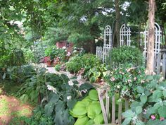 A MUST! Stream Cliff Herb Farm near North Vernon, Indiana is a great place to get perennials, herbs and more. They offer classes and their Tea Room has the best homemade chicken salad and desserts...Go at least once a year!
