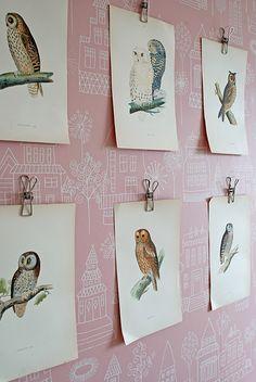 Botanicals and Wallpaper