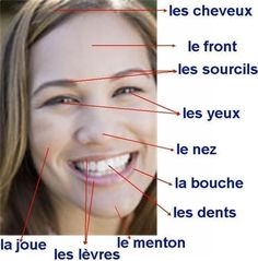 Le visage Visit the French Lessons Brisbane website here at www.frenchlessons... to learn more about Skype French lessons and other French language class opportunities as well www.frenchlessons... #frenchlessons #frenchlanguagelearning #learnfrench